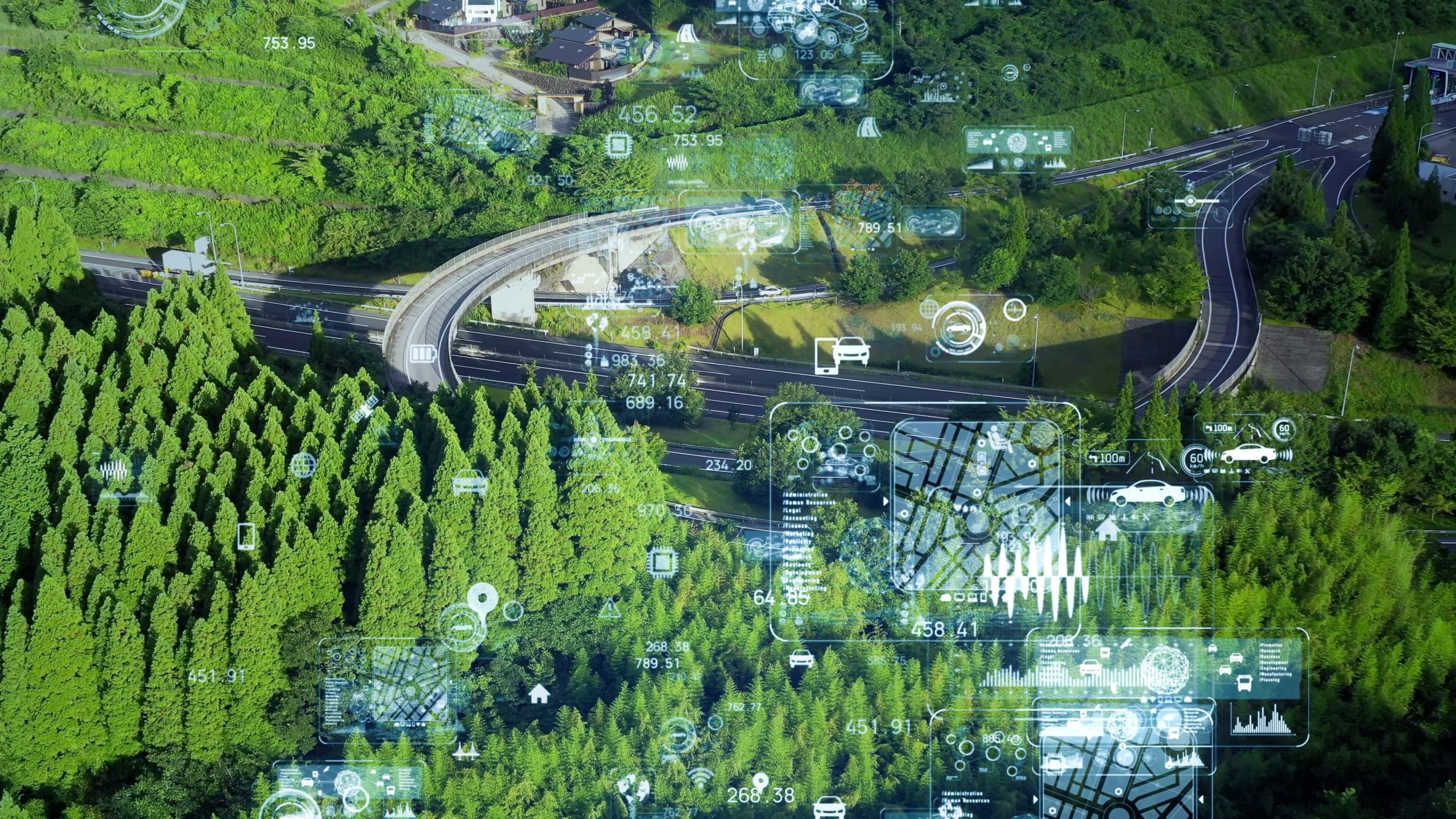 technology graphics overlaid on forest
